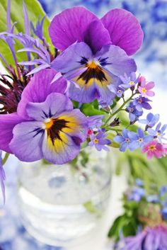 VIBEKE DESIGN: pretty pansies
