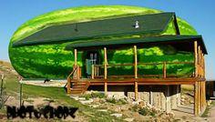 A watermelon house. Image detail for -Weird houses Crazy Houses, Little Houses, Weird Houses, Architecture Design, Fairytale House, Unusual Buildings, Unusual Homes, Building Structure, Weird And Wonderful