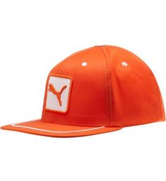 f5ec01306c6 New lid style Cat Patch Snapback Golf Hat