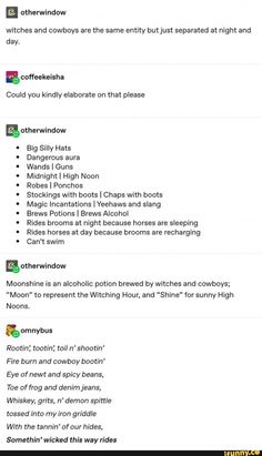 ultimate entity is a witch-cowboy character My Tumblr, Tumblr Funny, Funny Memes, Funny Shit, Funny Stuff, Writing Tips, Writing Prompts, Silly Hats, Haha