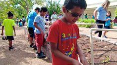 From fairy gardens to garden towers, Walter Bracken STEAM Academy transformed its school grounds into a student-centered, garden-learning wonderland.