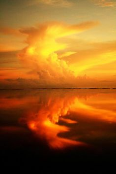 Jaffna Lagoon Sri Lanka #photos, #bestofpinterest, #greatshots, https://facebook.com/apps/application.php?id=106186096099420