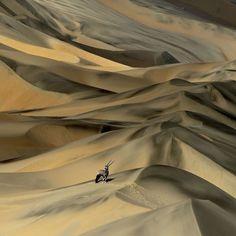 mordmardok:Desert survivor…by Sergey Gorshkov
