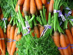 Karotte - Möhre / Carrot + Gemüse / Vegetables