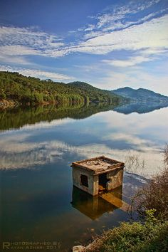 Latakia - Syria, Lake  inhabitant ... by R.Azhari, via Flickr