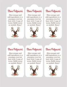 Christmas: Stovetop Potpourri Gift Idea – See Vanessa Craft – redshine Neighbor Christmas Gifts, Neighbor Gifts, Homemade Christmas Gifts, Homemade Gifts, Christmas Presents, Santa Gifts, Christmas Stockings, Silver Christmas Decorations, Personalized Christmas Ornaments