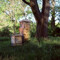 Bee boxes, my great-grandfather Charles Edward Welch was a bee keeper. He supplied everyone in the community with honey.