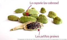 Comment utiliser la Cardamome en cuisine ?