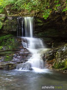 Hike the Catawba Falls Trail near Old Fort, east of Asheville, to a waterfall-filled river valley