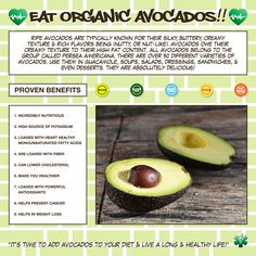 You know the avocado makes a killer guacamole. You might also know you can feel good eating one, thanks to healthy fats and loads of nutrients. But the mighty powers of the avocado stretch farther than you probably realize. 1. An avocado is a fruit, and more specifically a berry. 2. An avocado has more potassium than a banana. 3. They'll ripen more quickly with a banana or an apple around. 4. Avocados are one of a few high protein fruits. 5. You can swap them into baked goods recipes for…