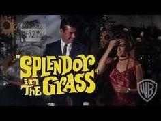 """Rubrichina #5  Il film: """"Splendore nell'erba"""" di Elia Kazan (1961)  Se li affrontiamo, certi dubbi spesse volte si risolvono nel nulla."""