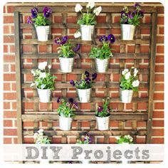 DIY Vertical Wall Planter | Cape 27 @Christina Childress Gardner would this be cool on the side yard??