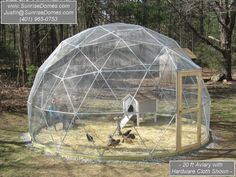 I need one for my chickens! Geodesic Dome Walk-in Outdoor Aviary / Flight Cage / Animal Pen - 20 ft Diameter