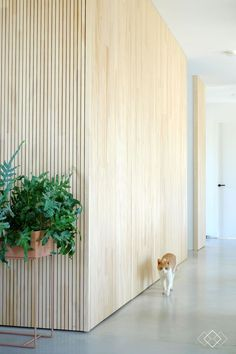 Home Decoration For Birthday Party Plywood Interior, Plywood Walls, Wooden Walls, Wooden Wall Panels, Wood Interior Walls, Inspiration Wand, Interior Inspiration, Minimalist Furniture, Minimalist Home