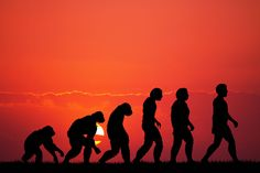 The 7 Predictable Challenges of Evolutionary Changes | Your Training Edge