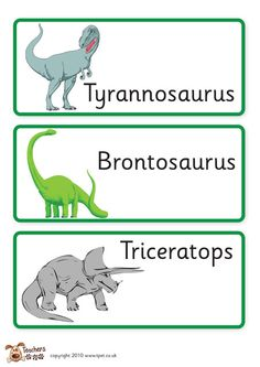 teacher s pet displays dinosaur labels free downloadable eyfs