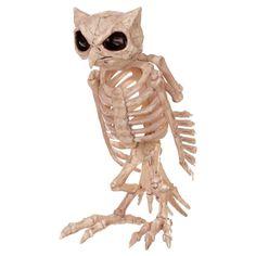 Halloween Skeleton Owl Decor, Ivory