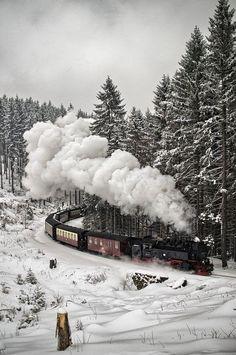 Train foret noire allemagne