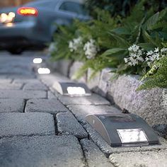 great idea for driveway - solar lights