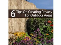 6 Tips On Creating Privacy For Outdoor Areas