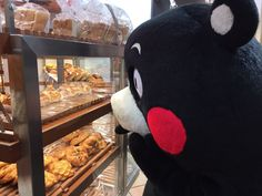 Bear Pics, Bear Pictures, Molang, Line Friends, Stuffed Toy, Cute Gif, Black Bear, Pinterest Board, Plushies