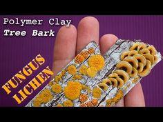 Polymer Clay Fungus, Mushrooms & Lichen on Old Tree Bark // Easy Fimo Tutorial - YouTube