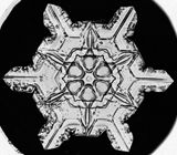 Vintage Snow Crystals - Archives Photo Gallery - National Geographic Magazine