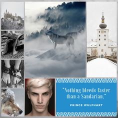 Aesthetic for the character of Prince Wulfhart, who will be appearing in Book Two of the Sand Dancer series. Wulfy, as he's known to his friends, is the crown prince of Hartnor and he's come all the way to Sandair to make friends with everyone. Or has he??