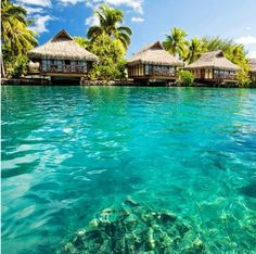 Fiji... Book early and save! Find Special Deals in HOT Destinations only at Expe... http://youtu.be/pl5K_GMnJHo @YouTube Expedia http://biguseof.com/travel