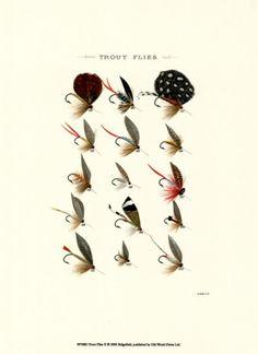 Trout Flies II Print at AllPosters.com