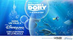Participa y consigue un viaje a Disneyland con Buscando a Dory
