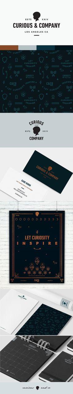 Curious & Co Brand Identity | Little Trailer Studio