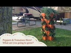 Grow Mediums : Vertical Gardening Stackable Planters For Soil, Hydroponics, and Aquaponics. Grow In The Backyard, Apartment Balcony, or set up a Commercial Greenhouse Growing System