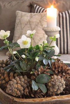 HOME & GARDEN: 50 idées pour utiliser des pommes de pins dans sa déco