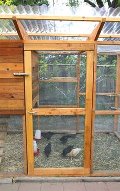 Garden Coop $20 for plans - though instead for chickens, I would try to make this as an aviary for parrots / birds! ♥