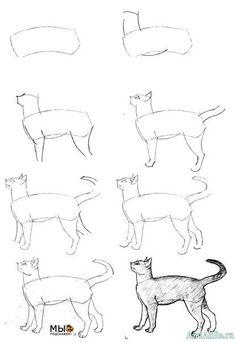 учимся рисовать кошку