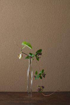 2012年6月16日(土) 花を、馬の首にかける鈴に見立てたことからの名。 花=馬の鈴草(ウマノスズクサ)、鴎蔓(カモメヅル) 器=古ガラス細瓶(20世紀)川瀬敏郎 Toshiro Kawase / Today's ikebana by Toshiro Kawase, Japan (16/6/2012)