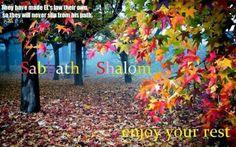#ShabbatShalom