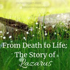 8 Best Story Of Lazarus For Children images in 2018 | Sunday