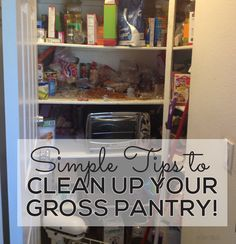 Simple tips to clean up your gross pantry from @Sophia Thomas Hopkins Provost  30daysblog.  Printables included! www.thirtyhandmadedays.com