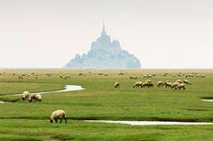 Emergiendo del mar como un espejismo, la silueta del Mont Saint Michel se dibuja sobre la niebla que cubre el islote donde se encuentra la abadía. Un lugar de leyendas donde las brumas añaden un halo de misterio.