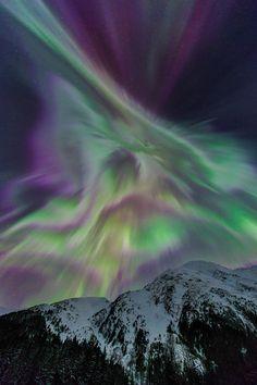 Aurora_Burst, Nick Selway