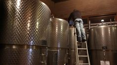 An amazing video of our Winery: roncocalino on Vimeo