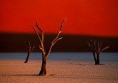 Sossusvlei in the Namib Desert