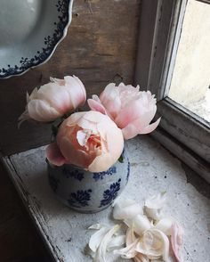 Pin for Later: Simply Beautiful Ways to Display Peonies in Your Home In a Delicate Blue and White Bowl