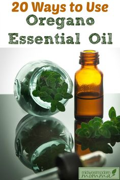 Don't miss our Top 20 Ways To Use Oregano Essential Oil!  These great essential oil uses make your daily life easier with all natural tips anyone can use!