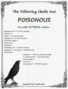 Poison Herbs - Pinned by The Mystic's Emporium on Etsy