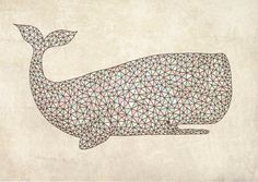 Animal patterns by Charly Clements, via Behance
