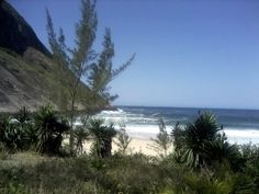 Praia de Itacoatiara -Niterói - Rio de Janeiro - Brasil por Izabelle Natal