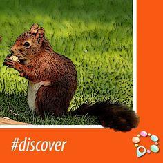 #Discover www.venue10.com